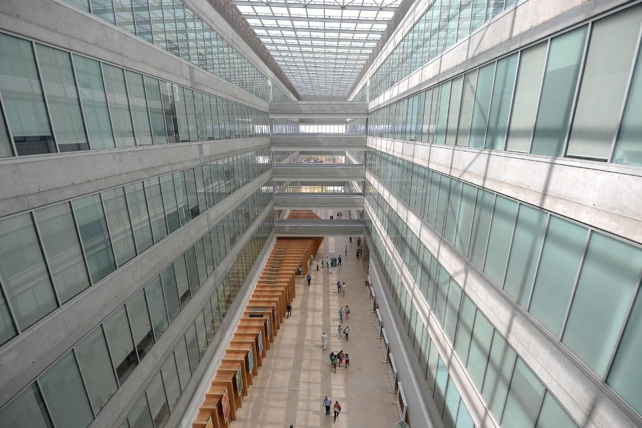 Hospital-de-Braga-hospital-de-braga-integra-projeto-de-literacia-infantil-sobre-a-covid-19-0607265366